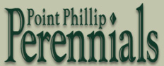Point Phillip Perennials
